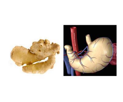 Benzediği organa iyi geldiğini kanıtlayan 10 yiyecek