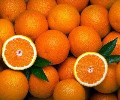 Rusya,Türk portakalına vergi getirmeyi planlıyor