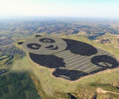 Bu dev panda saatte aslında dev bir enerji kaynağı