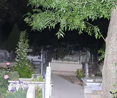 Mezarlıkta cenin bulundu