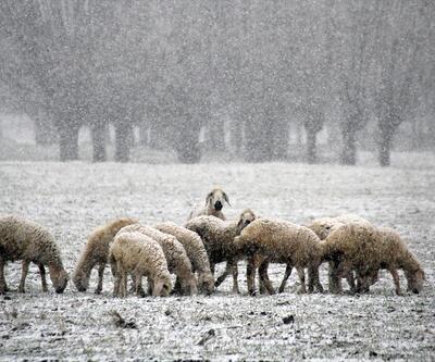 Kasım'da ilk kar Sivas ve Niğde'ye yağdı... İşte kartpostallık manzaralar