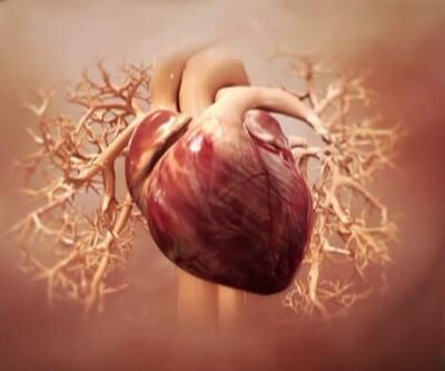 Kalp krizi anında ne yapmalı