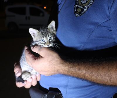 Polis aracın motoruna sıkışan yavru kediyi kurtardı