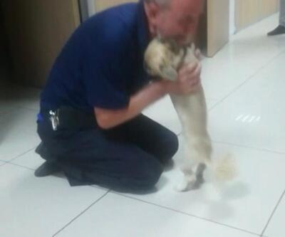 Polisler kaybolan köpeğini bulunca gözyaşlarına boğuldu
