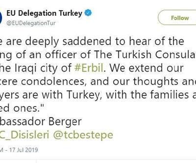 AB Büyükelçisi Berger: Türkiye'nin yanındayız