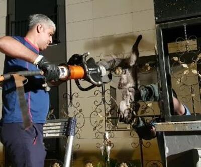 Bacağına korkuluk demiri saplanan kedi kurtarıldı