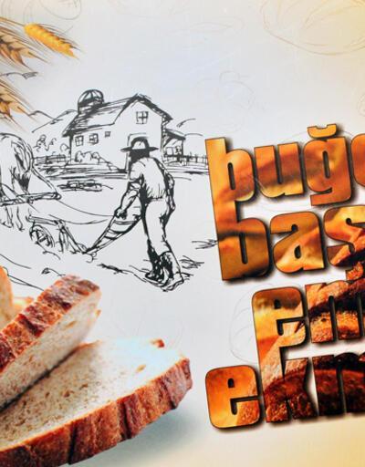 Bayat ekmek için kitap yazıldı