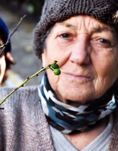 Marmaris'te badem çiçek açtı, Bodrum'da erik meyve verdi