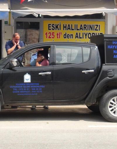 Bir korkunç haber de Bursa'dan