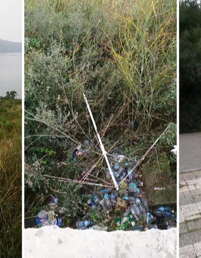Plastik atıkları çöpe atmak yerine doğayı kirlettiler
