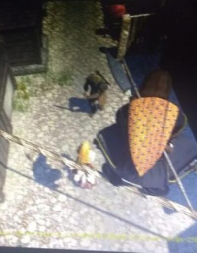 Assassins Creed Ragnarok için ilk ekran görüntüleri sızdırıldı
