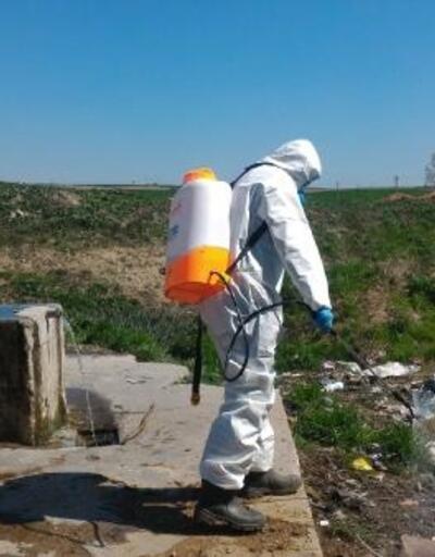 Uzunkörpü'de sivrisinekle mücadele sürüyor
