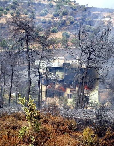 İzmir-Balçova'da orman yangını
