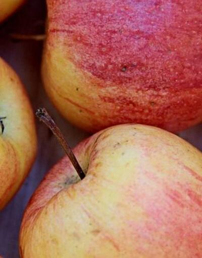 Meme kanserine karşı elma kabuğu