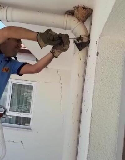 İtfaiye çatıda sıkışan kırlangıcı kurtardı