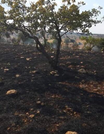 Nizip'te arazi yangını