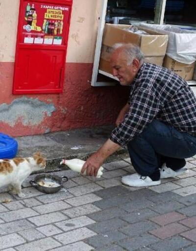 Sokak hayvanlarının bakımını veteriner hekim üstlendi