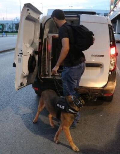 Narkotik köpekleri şark görevleri için yola çıktı