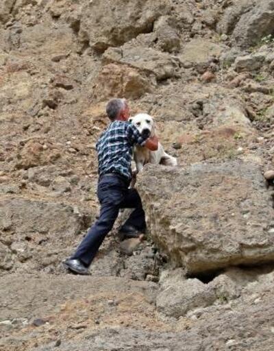 Yamaçta mahsur kalan köpek kurtarıldı