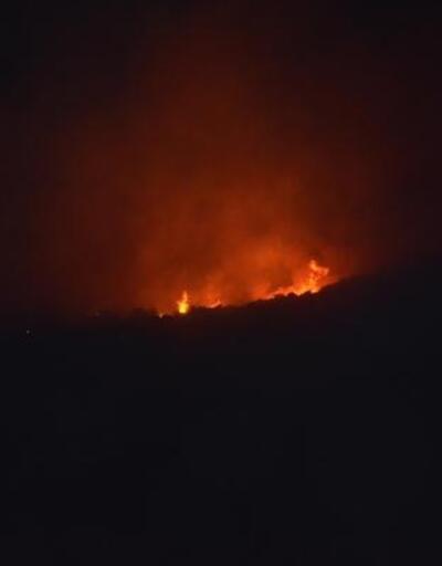 Aydın'da makilik alandaki yangın yayılıyor