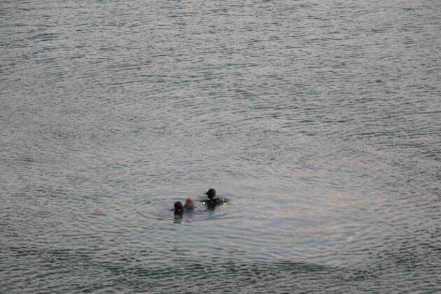 Ailesini indirdi, otomobilini baraj gölüne sürdü
