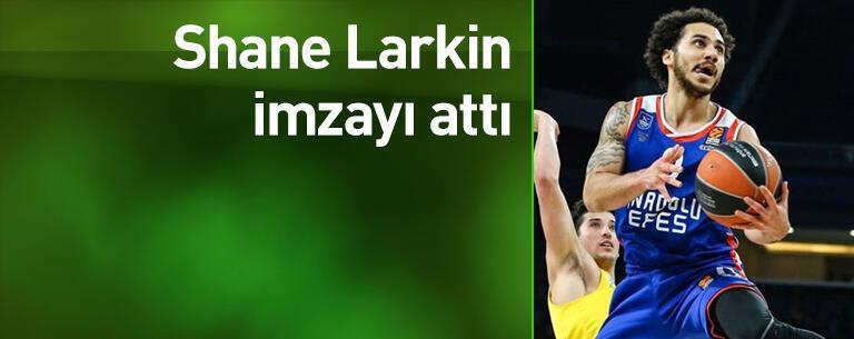 Shane Larkin imzayı attı