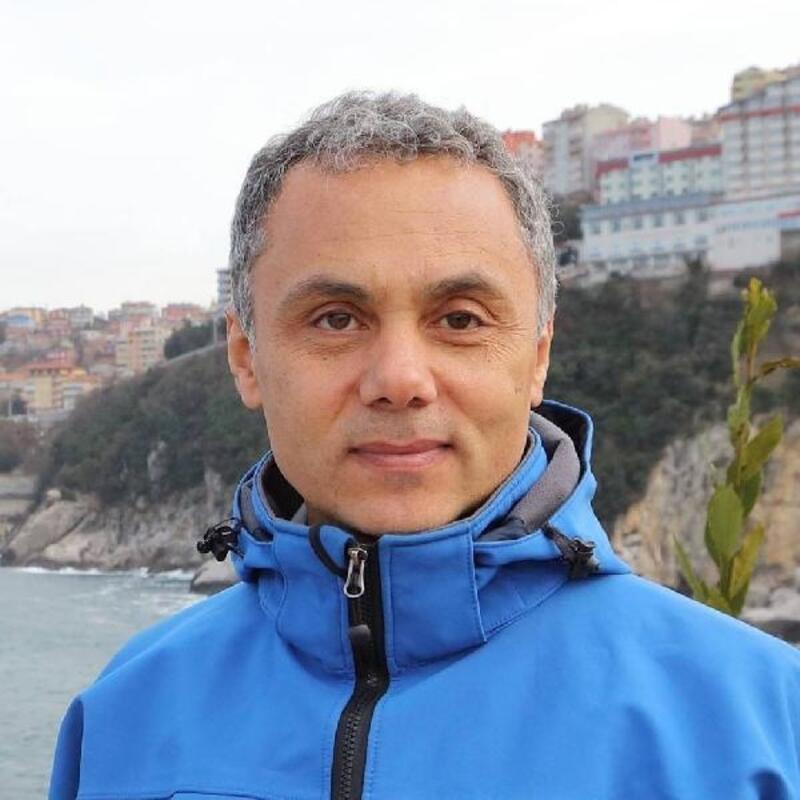 Prof. Dr. Sözen: Karadeniz'deki yunusların nesli tehlikede