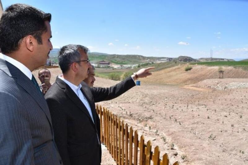 Kırıkkale'de lavanta vadisi projesi