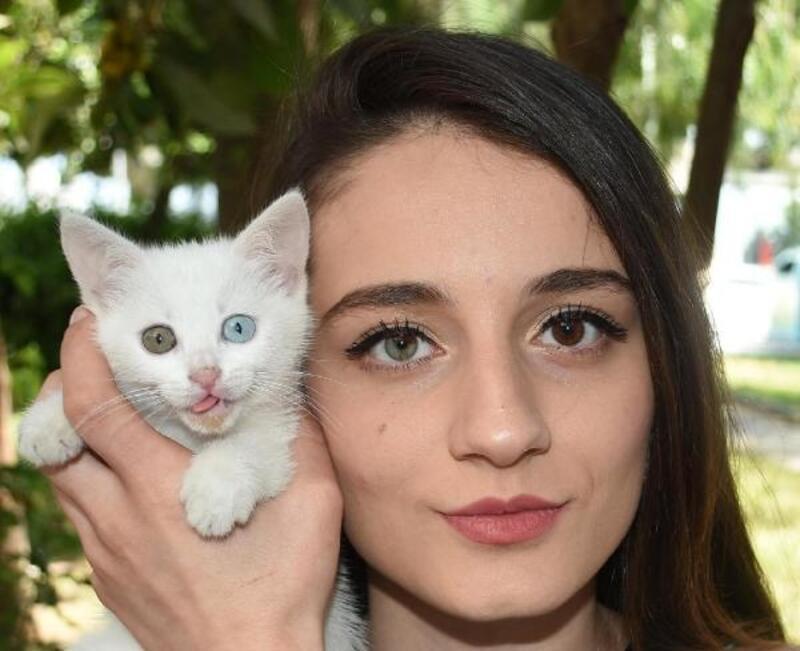 Simay'ın da kedisi Dombi'nin de bir göz, diğerinden farklı