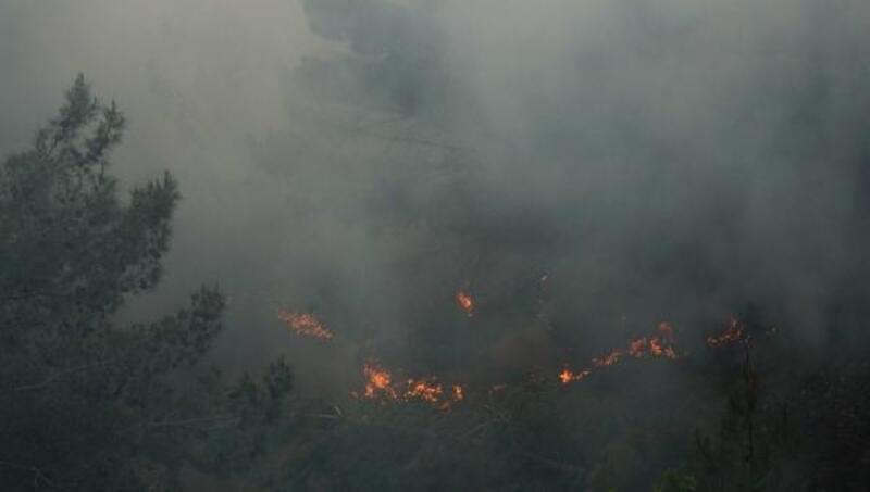 Orman yangınına destek için vatandaşlara çağrı yapıldı: 3 görevli dumandan etkilendi
