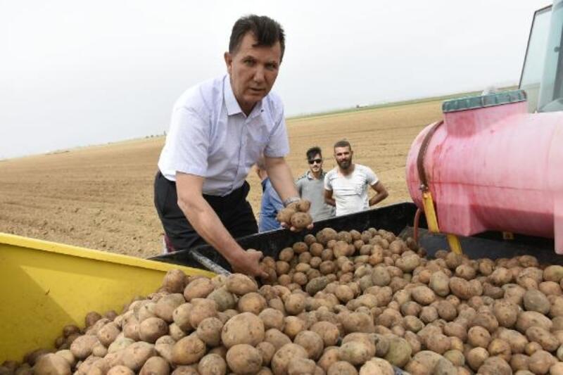 Niğde'de patates ekim alanı yüzde 10 arttı