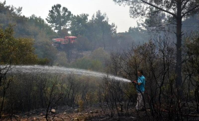 Serik'te tarlada başlayan yangın ormana sıçradı