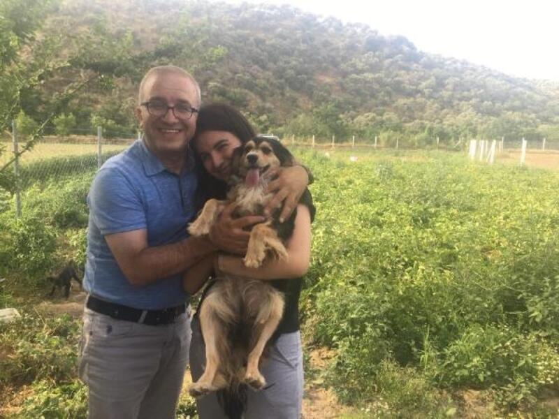 Kayıp köpekleri 'Alis'e 4 gün sonra kavuştular