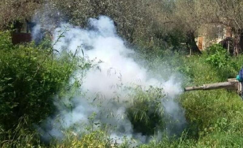Lüleburgaz Belediyesi ilaçlama çalışmalarına başladı