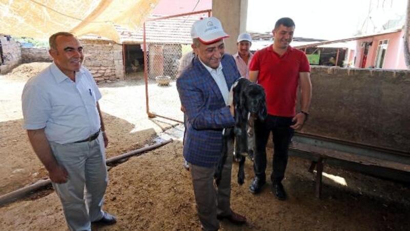 Genç çiftçi projeleri yerinde incelendi