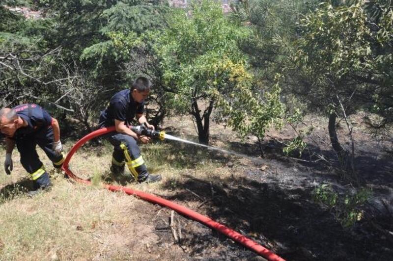 Afyonkarahisar'da mesire alanında yangın