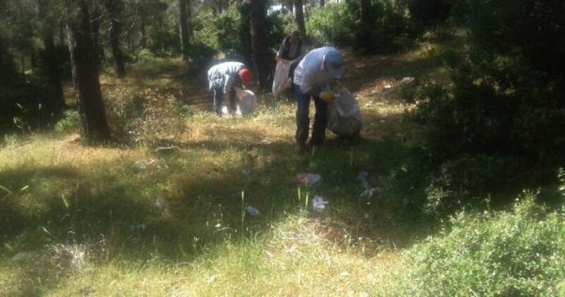 İslahiye'de ormanlık alanlarda temizlik