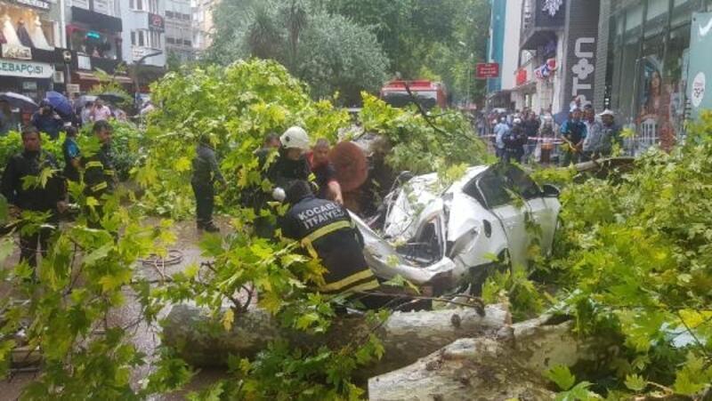 Çınar ağacı otomobilin üzerine devrildi: 1 yaralı