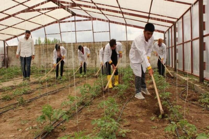 Liseli öğrenciler hem tarımı öğreniyor hem gelir elde ediyor
