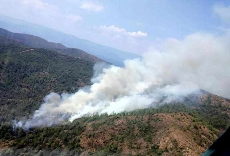 Marmaris'te orman yangın