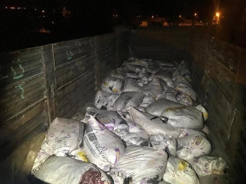 Van'da 11 ton inci kefali balığı ele geçirildi