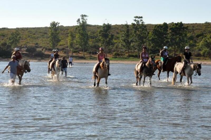 Didim'de atlı safari turları ilgi çekiyor