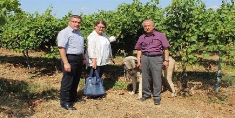 Tarım ve Orman İl Müdürü Özel: Meyvecilik, ilimiz ve ülke ekonomisine önemli katkılar bulunuyor
