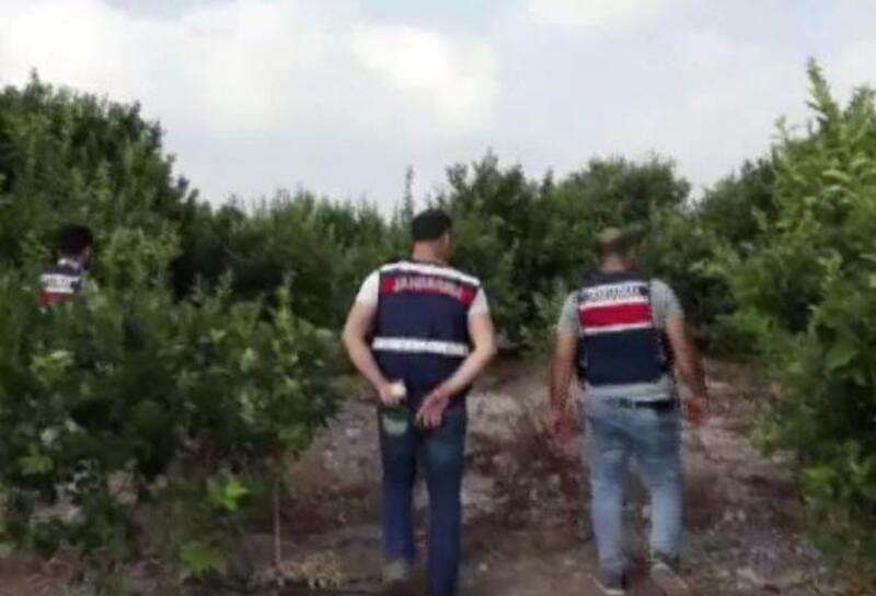 Mersin'de uyuşturucu operasyonunda 3 tutuklama