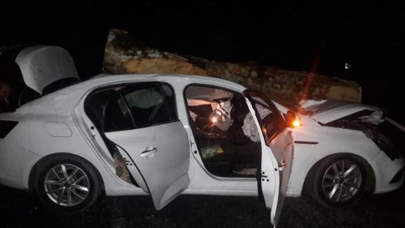 Otomobilin üzerine tomruk düştü: 3 yaralı