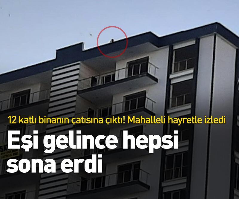 Son dakika: Elazığ'da 12 katlı binada intihar girişimi